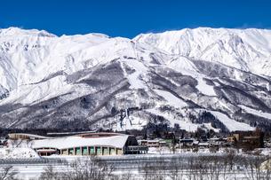 信州 長野県白馬村 冬の白馬八方尾根スキー場の写真素材 [FYI04109397]