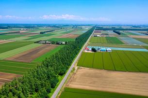 芽室町の空撮の写真素材 [FYI04110278]