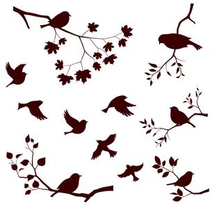 鳥と木の枝 セットのイラスト素材 [FYI04110361]
