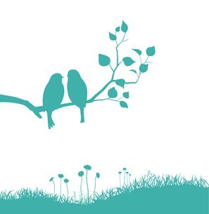 野原と枝にとまる2羽の鳥のイラスト素材 [FYI04110364]