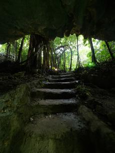 石垣島の洞窟の写真素材 [FYI04110527]