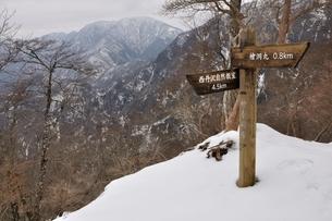 厳冬の山地 檜洞丸の写真素材 [FYI04110593]