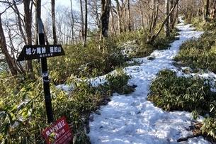 雪のブナ沢乗越の写真素材 [FYI04110680]
