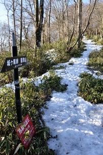 雪のブナ沢乗越の写真素材 [FYI04110682]