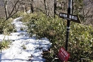 雪のブナ沢乗越の写真素材 [FYI04110714]