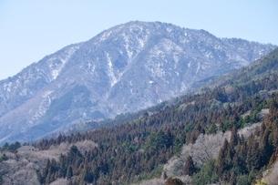 春山の御正体山の写真素材 [FYI04110737]