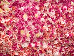 造花を貼りつめた壁面の写真素材 [FYI04111117]