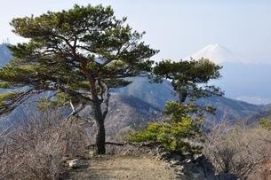 清八山山頂より望む富士山の写真素材 [FYI04111198]