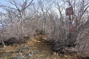 清八山山頂の写真素材 [FYI04111223]