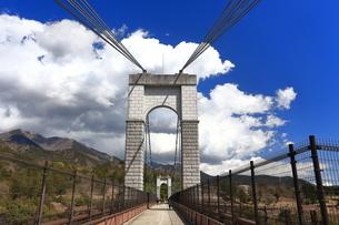 県立秦野戸川公園 風の吊り橋の写真素材 [FYI04111243]