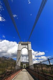 県立秦野戸川公園 風の吊り橋の写真素材 [FYI04111264]