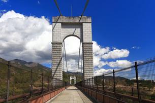 県立秦野戸川公園 風の吊り橋の写真素材 [FYI04111266]