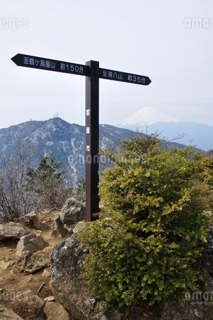 本社ヶ丸の山頂と富士山の写真素材 [FYI04111346]
