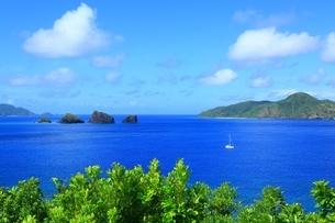 座間味島 神の浜展望台の写真素材 [FYI04112463]