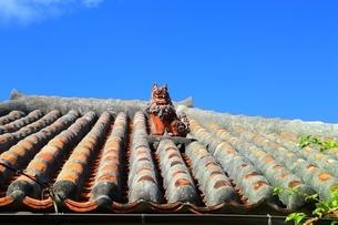 赤瓦屋根とシーサーの写真素材 [FYI04112539]