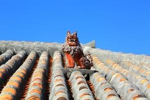 赤瓦屋根とシーサーの写真素材 [FYI04112540]