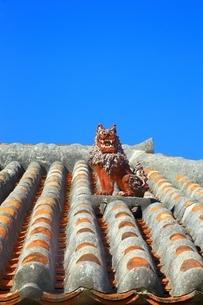 赤瓦屋根とシーサーの写真素材 [FYI04112541]