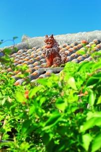 赤瓦屋根とシーサーの写真素材 [FYI04112544]