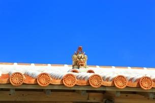 赤瓦屋根とシーサーの写真素材 [FYI04112572]
