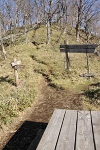 早春のヤタ尾根出合の写真素材 [FYI04112972]