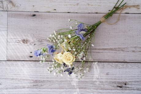 花の写真素材 [FYI04112982]