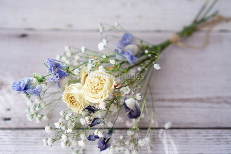 花の写真素材 [FYI04112983]