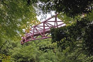 橋の写真素材 [FYI04113059]