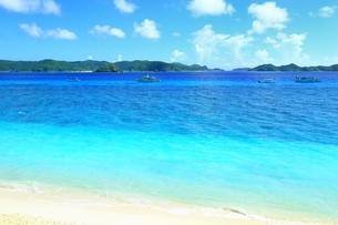 阿嘉島 ニシバマビーチの写真素材 [FYI04113604]