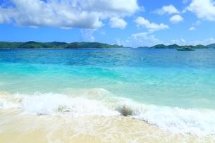 阿嘉島 ニシバマビーチの写真素材 [FYI04113631]