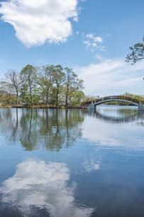 初夏の大沼公園の写真素材 [FYI04113972]