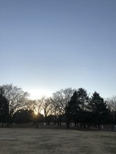 夕方の公園の写真素材 [FYI04113978]