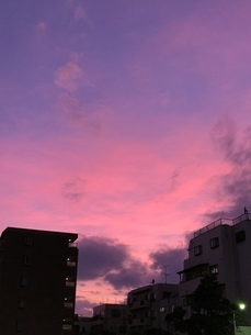 ピンク色の夕焼け空の写真素材 [FYI04113986]