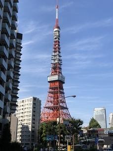 交差点から見た晴天の東京タワーの写真素材 [FYI04113989]