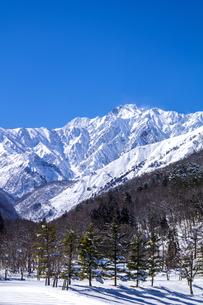 信州 長野県白馬村 冬の白馬村郊外と五竜岳の写真素材 [FYI04114396]