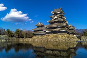 信州 長野県松本市 国宝松本城の写真素材 [FYI04114420]