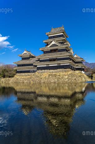 信州 長野県松本市 国宝松本城の写真素材 [FYI04114421]