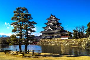 信州 長野県松本市 国宝松本城の写真素材 [FYI04114425]