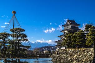 信州 長野県松本市 国宝松本城の写真素材 [FYI04114426]