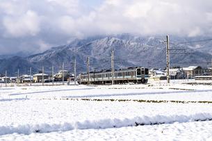 信州 長野県大町市常盤地区 冬の朝を走る大糸線の写真素材 [FYI04114449]