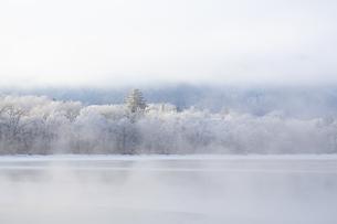 厳冬の朝  朝もやに包まれた屈斜路湖畔の写真素材 [FYI04114752]