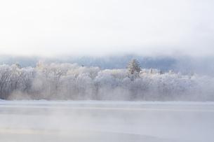 厳冬の朝  朝もやに包まれた屈斜路湖畔の写真素材 [FYI04114753]