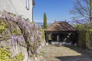 スイス、ジュネーブ近郊、ルッサンの風景の写真素材 [FYI04114980]