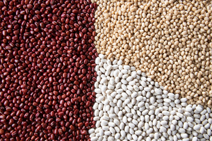 Various kinds of beans image. Red adzuki beans,white adzuki beans,white kidney beans.の写真素材 [FYI04115095]