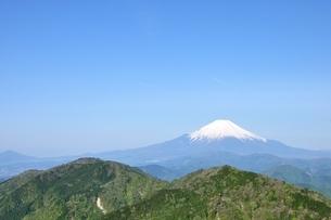 富士山に新緑と青空の写真素材 [FYI04115148]