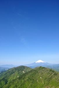 富士山に新緑と青空の写真素材 [FYI04115149]