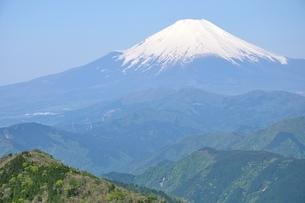 丹沢より富士山眺望の写真素材 [FYI04115175]