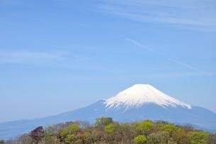 春の富士山眺望と青空の写真素材 [FYI04115199]