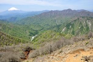 塔ノ岳 春の眺望の写真素材 [FYI04115265]