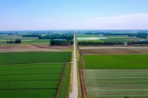 芽室町の空撮の写真素材 [FYI04115272]