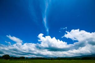 夏空の写真素材 [FYI04115383]